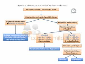 Algoritmo_BNP_estudio_AISEC_wwww.cardiofamilia.org_small