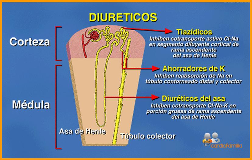 Farmacos diureticos para edema